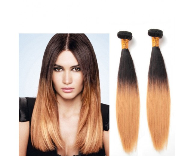 2pcs/lot Brazilian Remy Hair Straight Ombre Hair Extensions Two Tone Color 1B/27 BR0013