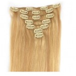 #27/613 Clip In Human Hair Extensions CR001