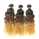 3pcs/lot Brazilian Water Wave Ombre Remy Hair Extensions Three Tone 1B/4/27# BR0067