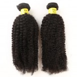2pcs/lot Afro Kinky Curly Brazilian Virgin Hair Bundles BD0024