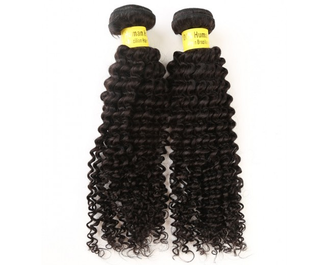 2pcs/lot Kinky Curly Brazilian Virgin Hair Bundles BD0023