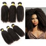 3pcs/lot Afro Kinky Curly Virgin Brazilian Hair Bundles BD004