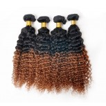 2pcs/lot Kinky Curly Brazilian Remy Hair Ombre Hair Two Tone Color 1B/30# BR0014